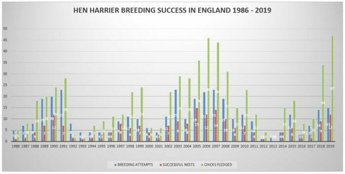 Hen Harrier Breeding Numbers (Source Countryside Alliance)