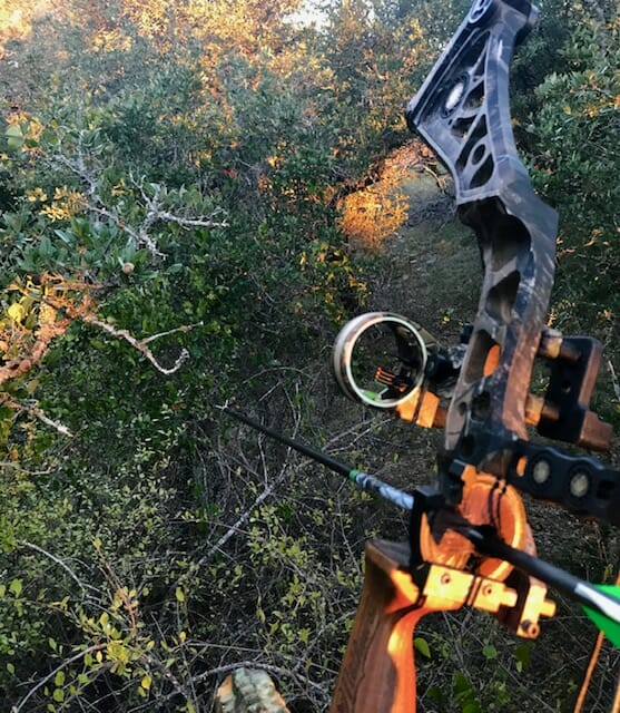 Bowhunter in stand