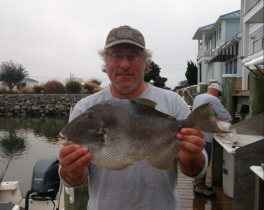 Record Triggerfish Caught