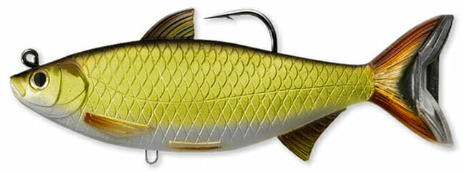 LIVETARGET Golden Shiner Swimbait