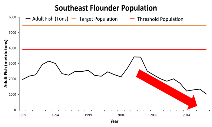 Combined southern flounder data from Florida, Georgia, South Carolina, and North Carolina show that the species has been overfished for decades and is currently at a record low point.