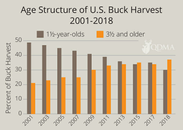 Age structure of U.S. Buck Harvest