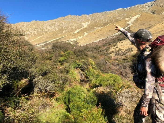 Hiking out with memories and and old Tahr bull