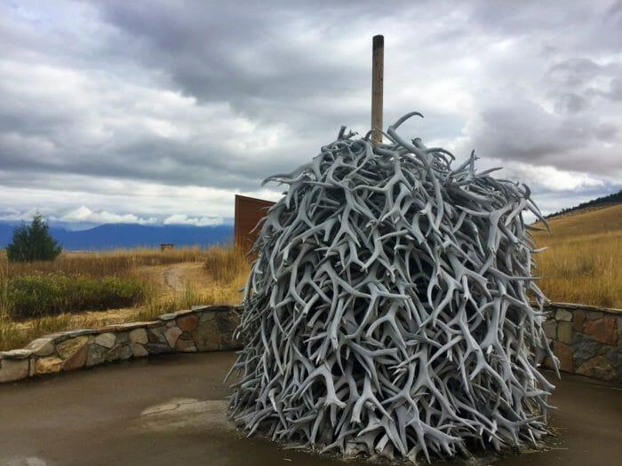Montana's National Bison Range antler pile