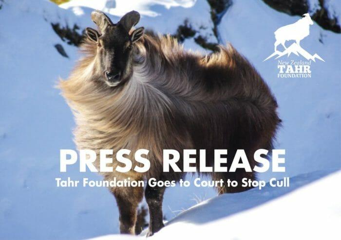 Tahr Foundation