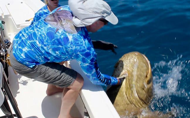 Minnesota family witness record-breaking grouper strike on Aqua-Vu camera screen, catch and release the 583-pound goliath